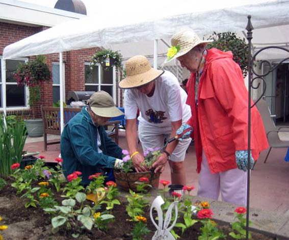 Three senior women tending a raised garden.